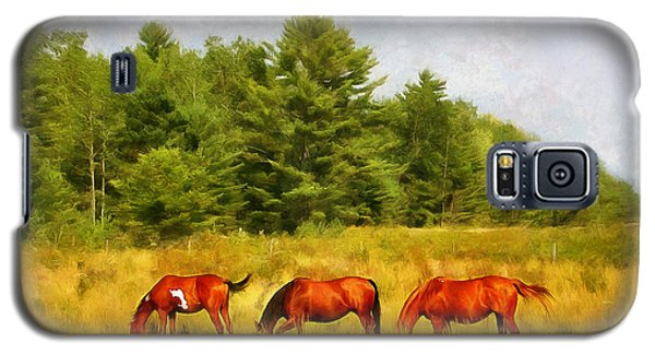 Summer Hay Burners Galaxy S5 Case