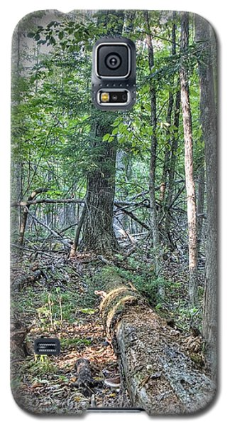 Summer In A Canadian Forest Galaxy S5 Case
