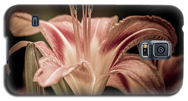 Summer Lily Galaxy S5 Case