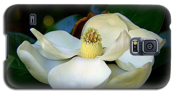 Summer Magnolia Galaxy S5 Case by Lisa L Silva