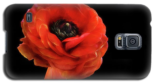Galaxy S5 Case featuring the photograph Summer Orange by Darren Fisher