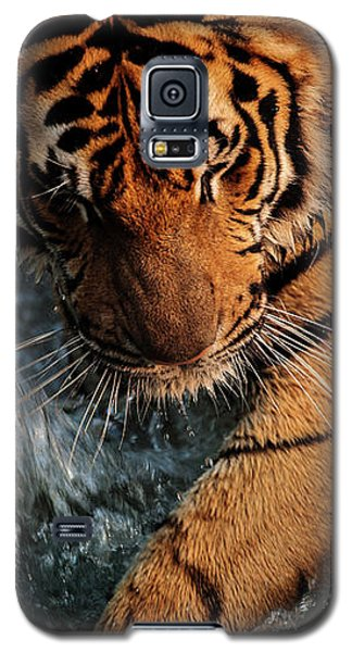 Summer Play Galaxy S5 Case