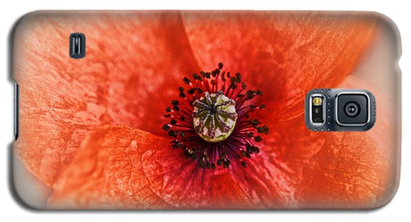 Galaxy S5 Case featuring the photograph Summer Poppy by Douglas MooreZart