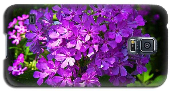 Summer Purple Galaxy S5 Case