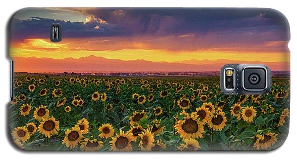 Summer Radiance Galaxy S5 Case