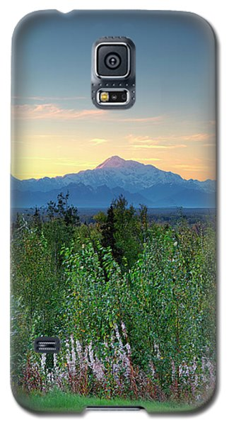 Summer Set Denali Galaxy S5 Case
