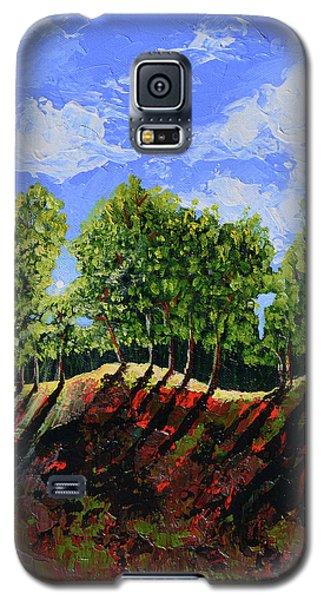 Summer Shadows Galaxy S5 Case by Donna Blackhall