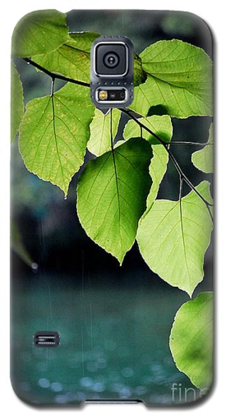 Summer Showers Galaxy S5 Case by Robert Meanor