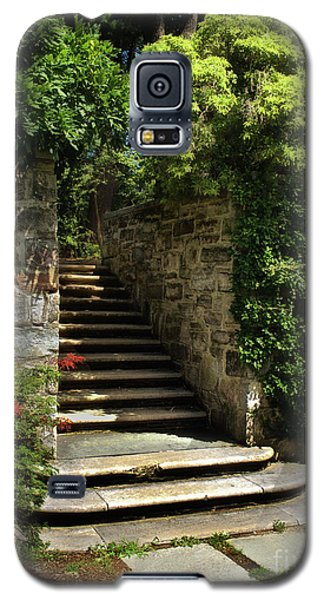 Summer Steps Galaxy S5 Case by Mark Miller