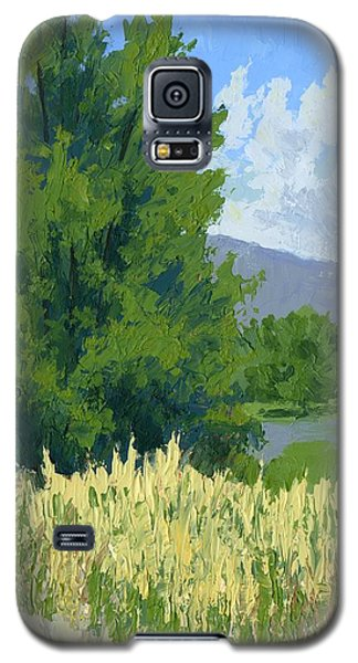 Summer Tree Galaxy S5 Case