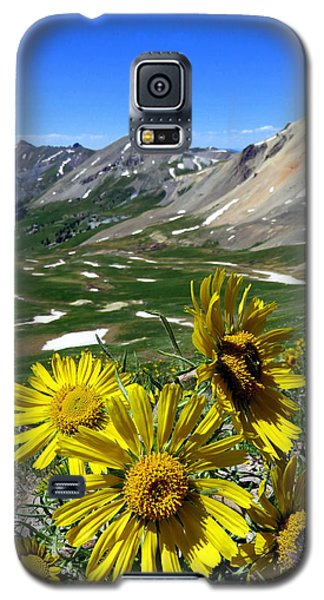 Summer Tundra Galaxy S5 Case by Karen Shackles