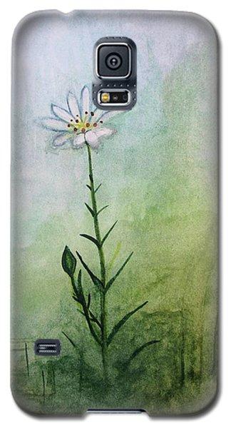 Summer Wildflower Galaxy S5 Case