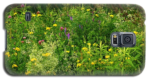 Galaxy S5 Case featuring the photograph Summer Wildflowers by Smilin Eyes  Treasures