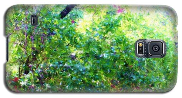 Summer Window Galaxy S5 Case