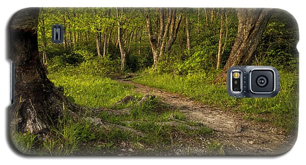 Price Lake Trail - Blue Ridge Parkway Galaxy S5 Case