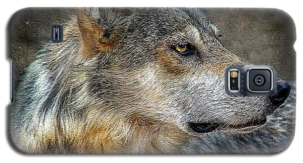 Summertime Coated Wolf Galaxy S5 Case
