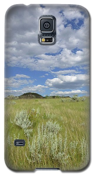Summertime On The Prairie Galaxy S5 Case