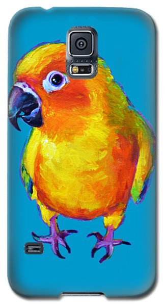 Sun Conure Parrot Galaxy S5 Case