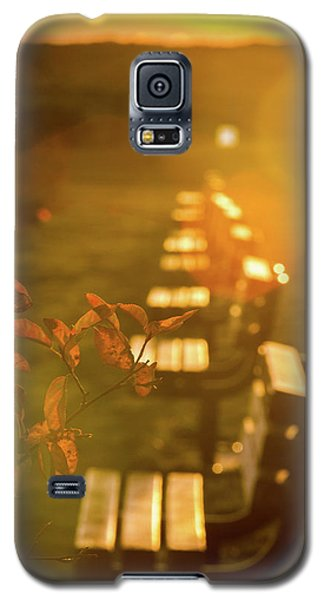 Sun Drenched Bench Galaxy S5 Case