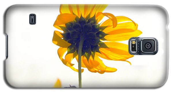 Sun Flower 101 Galaxy S5 Case