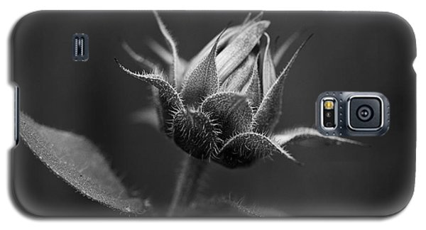 Sun Flower Blossom Bw Galaxy S5 Case