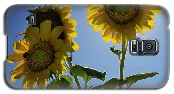 Galaxy S5 Case featuring the photograph Sun Flowers by Brian Jones