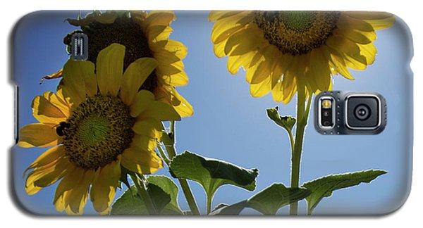 Sun Flowers Galaxy S5 Case