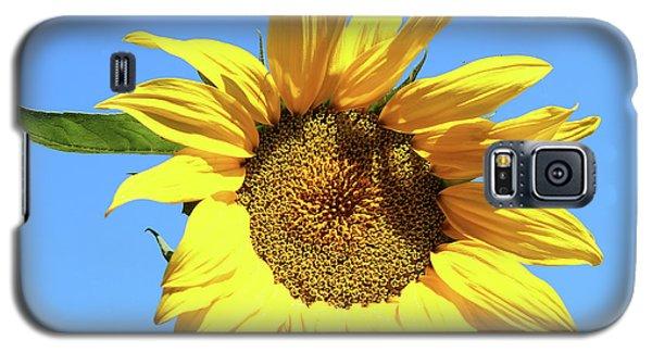Sun In The Sky Galaxy S5 Case
