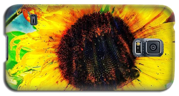 Galaxy S5 Case featuring the photograph Sun by Jame Hayes
