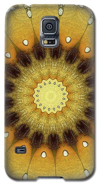 Sun Kaleidoscope Galaxy S5 Case by Wim Lanclus