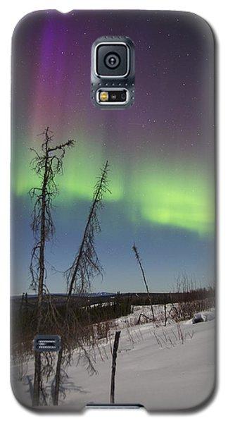 Sun-kissed Aurora Galaxy S5 Case