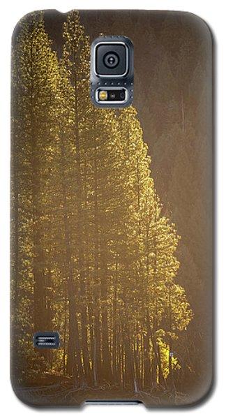 Sun Kissed Galaxy S5 Case