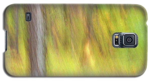 Sun Kissed Tree Galaxy S5 Case