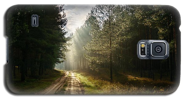 Sun Light At Pine Forest Galaxy S5 Case