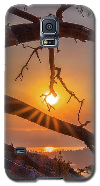 Sun Ornament - Cropped Galaxy S5 Case