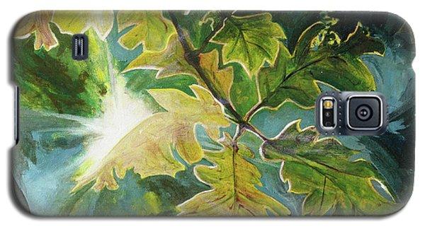 Sun Through Oak Leaves Galaxy S5 Case
