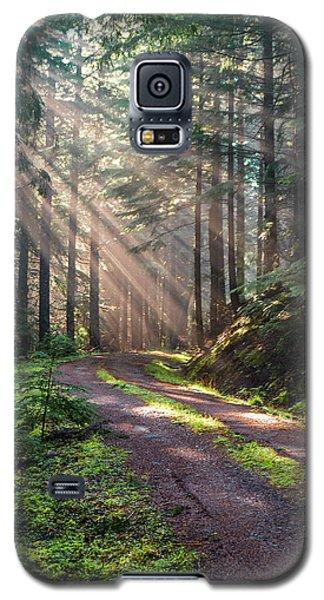 Sunbeam In Trees Portrait Galaxy S5 Case