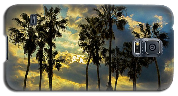 Galaxy S5 Case featuring the photograph Sunbeams And Palm Trees By Cabrillo Beach by Randall Nyhof