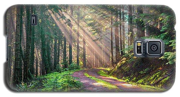 Sunbeams In Trees Galaxy S5 Case