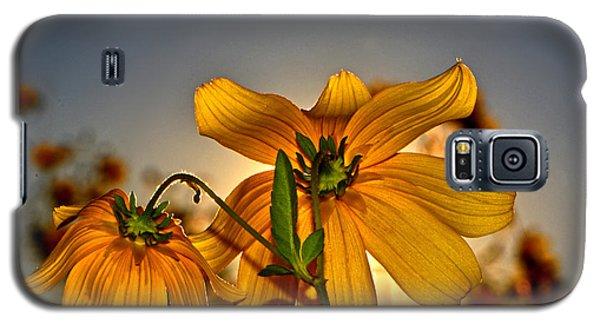 Sunblock 001 Galaxy S5 Case