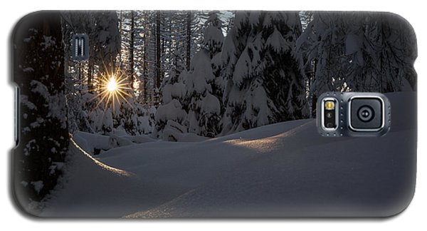 Sunburst In Winter Fairytale Forest Harz Galaxy S5 Case