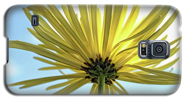 Galaxy S5 Case featuring the photograph Sunburst by Judy Vincent