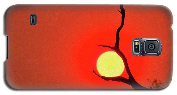Suncatcher Galaxy S5 Case