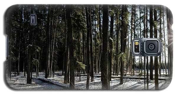 Sundial Forest Galaxy S5 Case