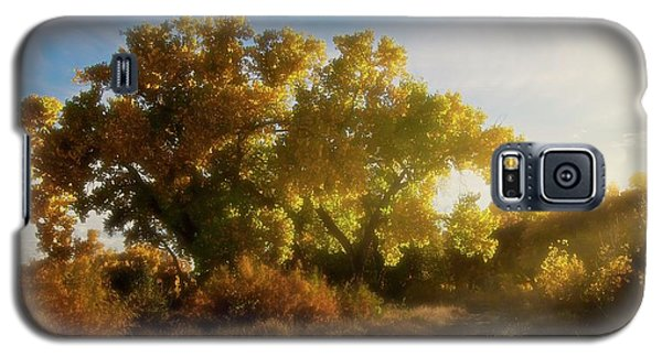 Sundown, Rio Grande Bosque, New Mexico Galaxy S5 Case