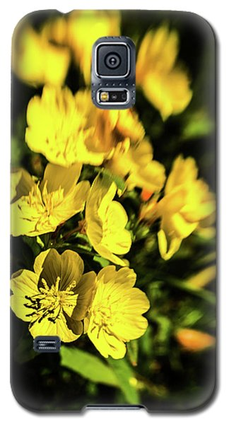 Sundrops Galaxy S5 Case by Onyonet  Photo Studios