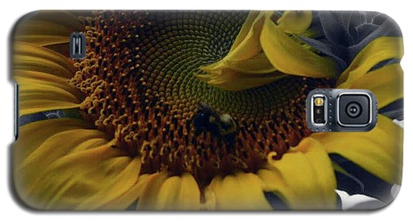 Sunflower Bee Galaxy S5 Case