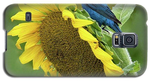 Sunflower Blue Galaxy S5 Case