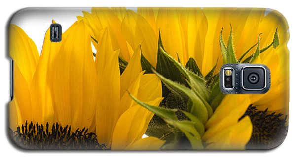 Sunflower Bright Galaxy S5 Case