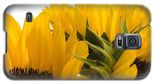 Sunflower Bright Galaxy S5 Case
